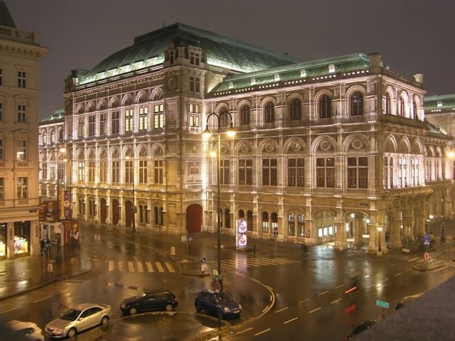 AMAZING APARTMENT CENTER WIEN OPERA