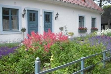B&B two persons in Skanör/Falsterbo - Skanör - Bed & Breakfast