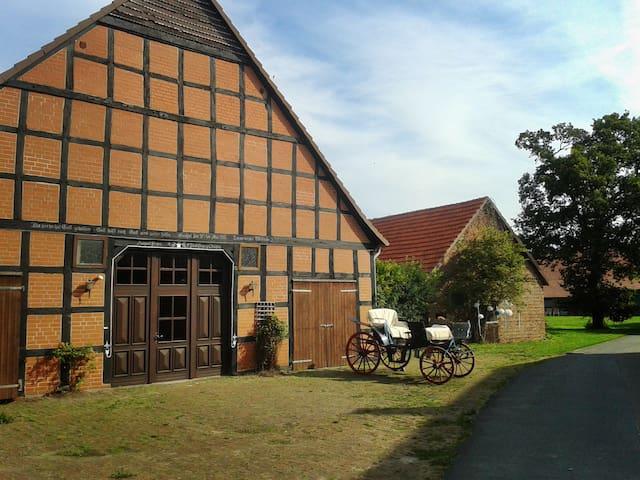 Großes naturnahes Bauernhaus - Brockum - Rumah