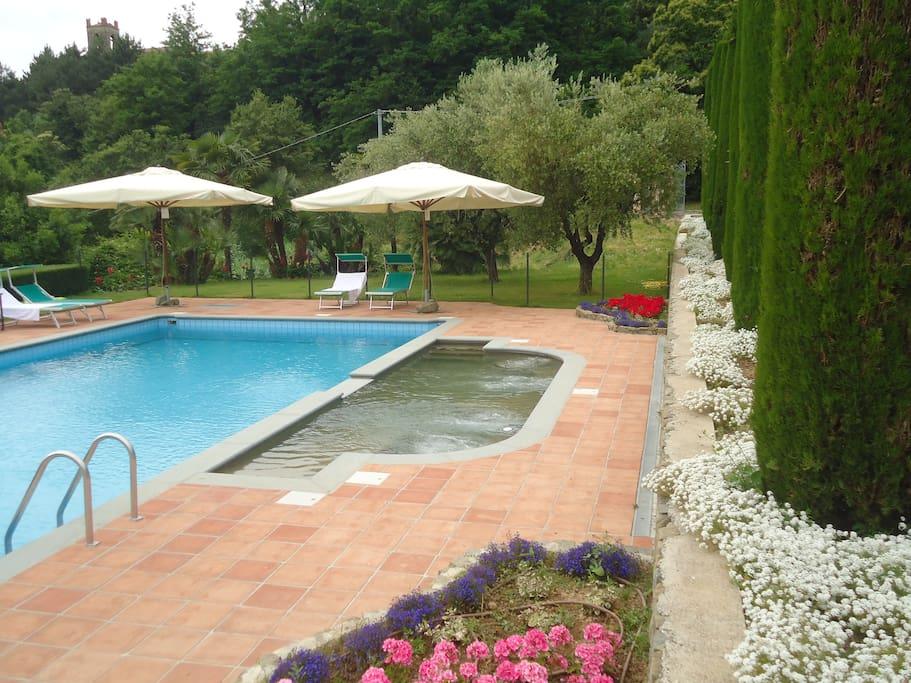 Piscina Panoramica Tra Gli Olivi Farm Stays For Rent In