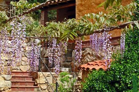 Can Teixidor de Pagès, rural house  - Osor