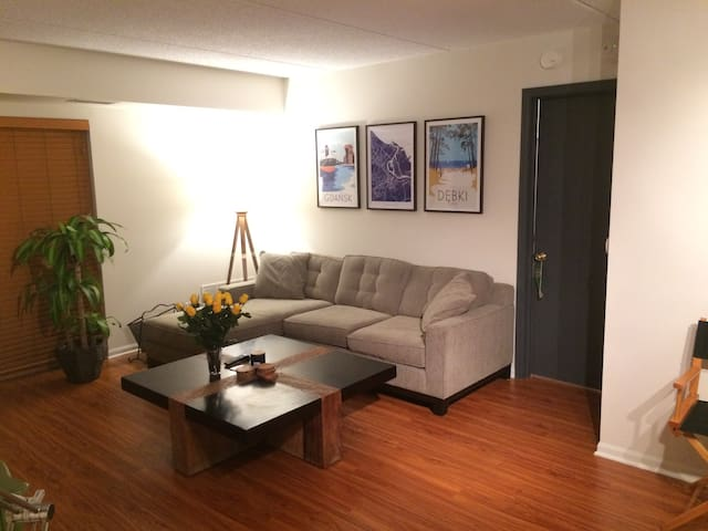 Newly renovated apartment close to O'Hare/Rosemont