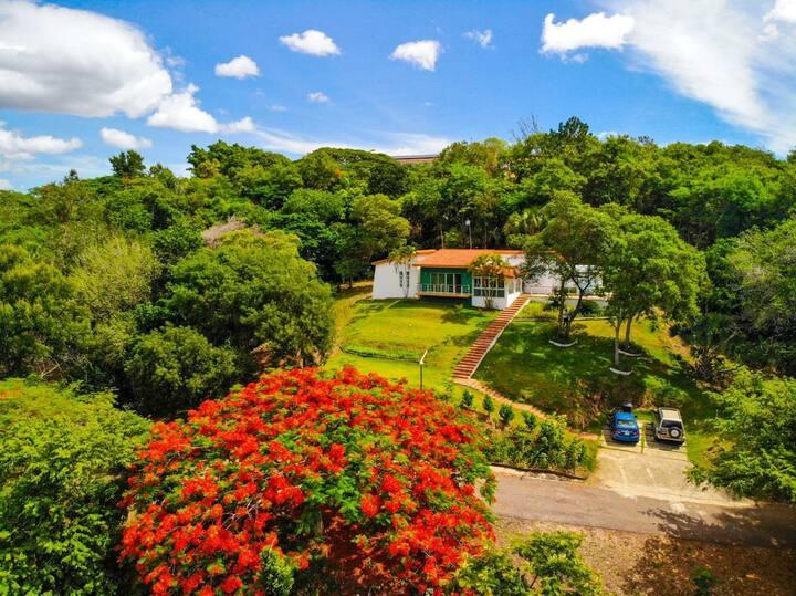 Paraíso vista tropical Sajoma
