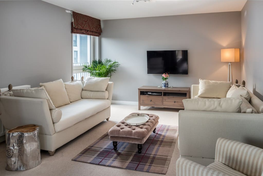 Comfortable seating area, the apartment has wifi