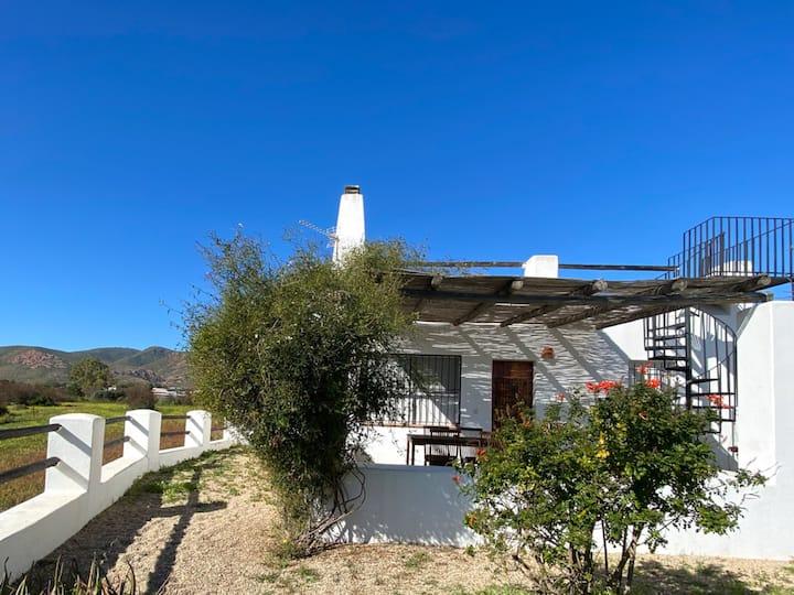 Casa cipreses en el centro del Valle de Rodalquilar