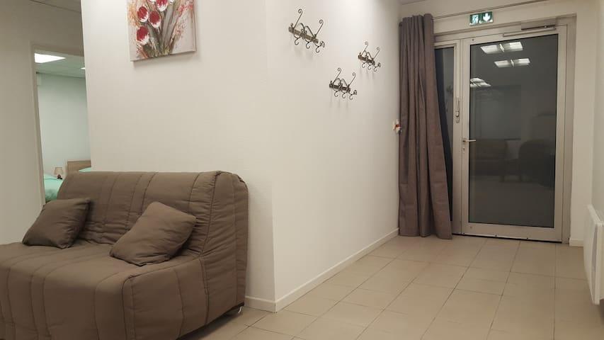 Gite Grand Format avec 2 garages - Colmar - Appartement en résidence