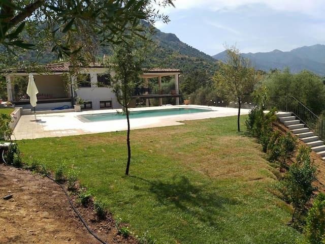 Villa con piscina tra le vigne del Cannonau