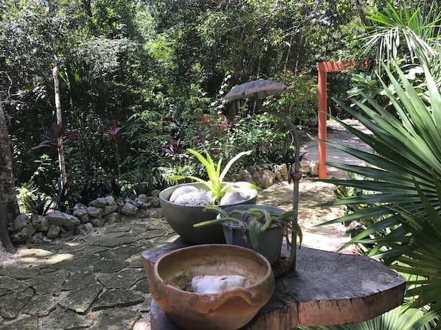 Jardin Los Aluxes Tulum