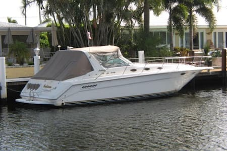 Paradise Express  37' Sea Ray - Orange Beach