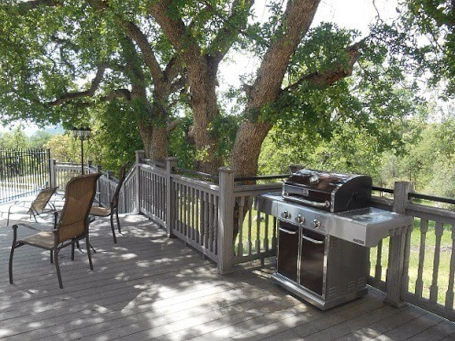 Lots of outside space for family gatherings. Kenmore Elite family size gas BBQ.  Play a game of  horseshoes under the huge oak trees.
