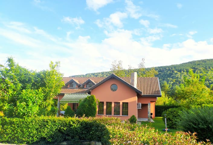 Wonderful country  Villa in Nature - Sapanca