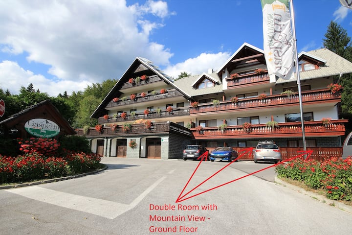 Hotel Gasperin - Double room with mountain view - ground floor