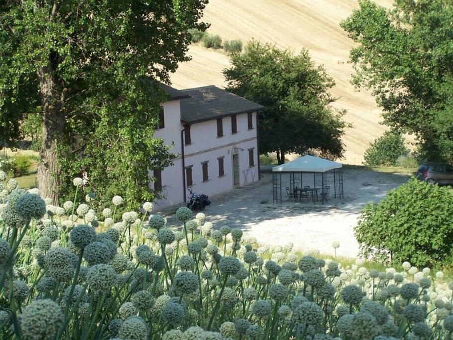 Casale nel verde tra colline e mare appartamenti in for Caminetti in stile spiaggia