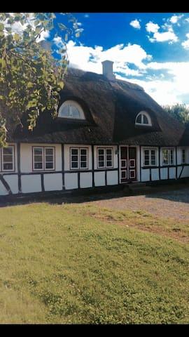 """Sommerhuset """"Elseminde"""" på Langeland - Bagenkop"""