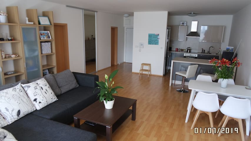 Modern Flat 80 m2,  with A/C and free parking