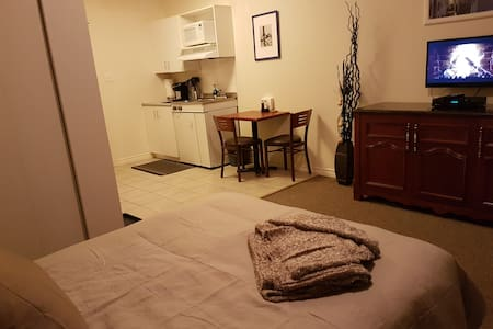 Cozy Little Studio, min to Downtown Ottawa - 加蒂諾 - 公寓