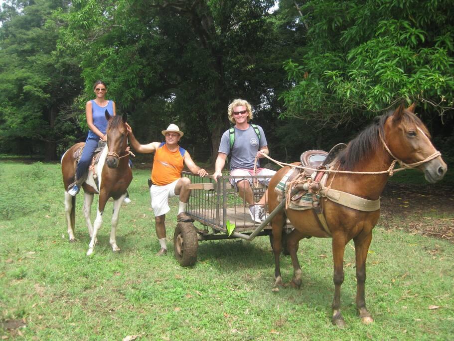 Tenemos areas para paseos a caballo y en coche