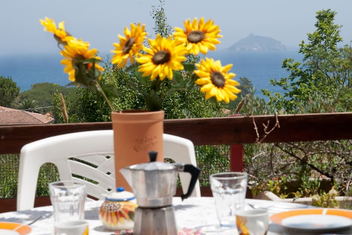 Elba apartament: lovely seaview