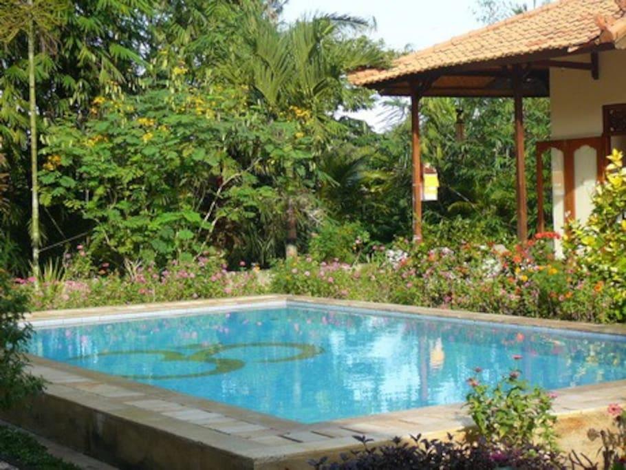 Gästehaus mit Pool
