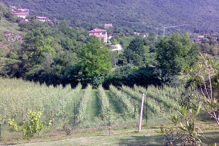 B&b Casa Rosa - Botticino - Bed & Breakfast