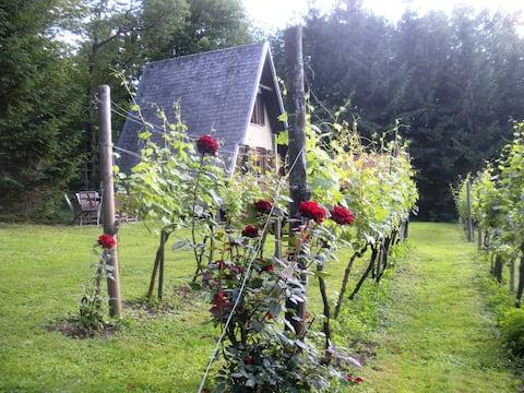 Ferienhaus am Weingarten