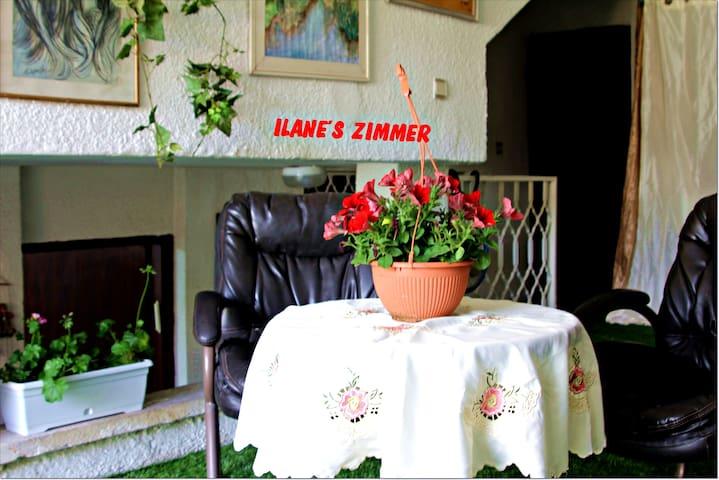 Elaine's Zimmer