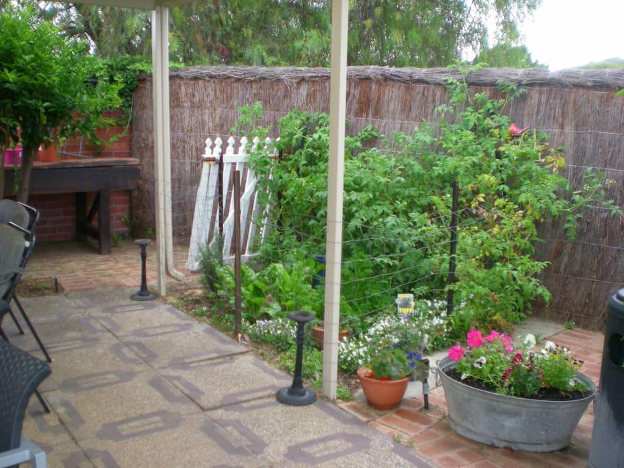 Out door and vegetable garden