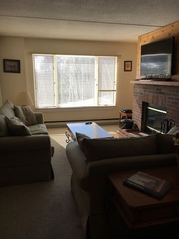 Cozy, awesome location with Moover. - Dover - Condominium