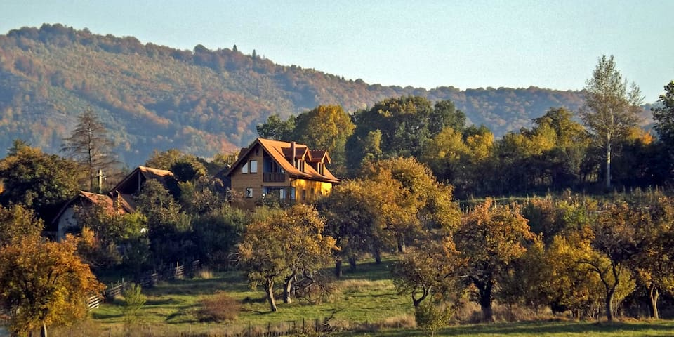 • VILLA ZOLLO • Carpathian cottage Sibiu Romania - Vale - Willa