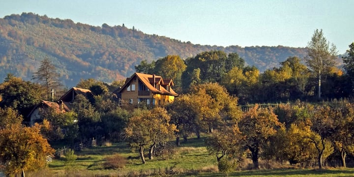 • VILLA ZOLLO • Carpathian cottage Sibiu Romania