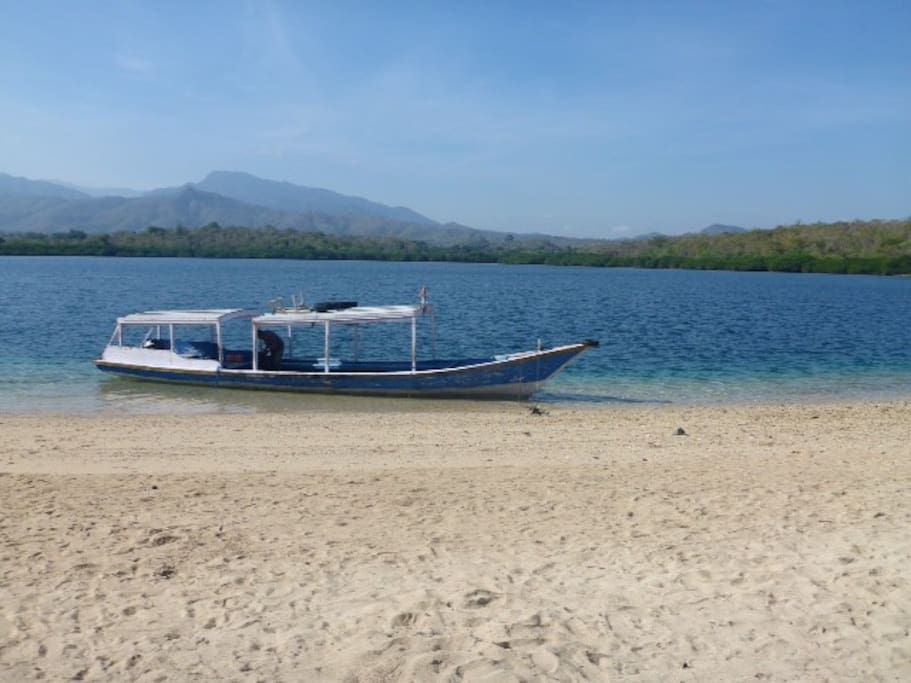 Boat for Diving or Snorkeling at Menjangan Island
