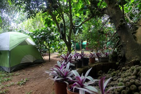 For Groups!! Campstay in a fruit orchard! - Kushalnagar - Pousada
