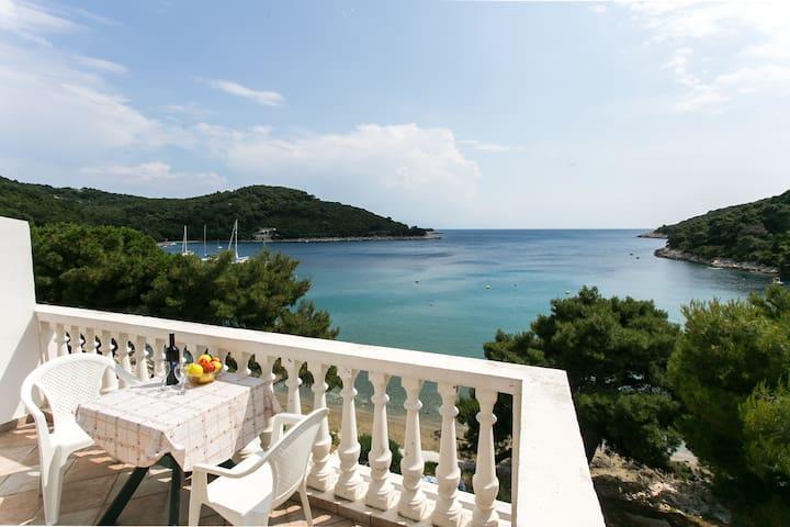 Apartment on a romantic island - Maranovići - Apartment