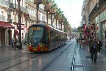 Rue Maguelone, ses palmiers et ses trams et l'appartement un peu plus bas!
