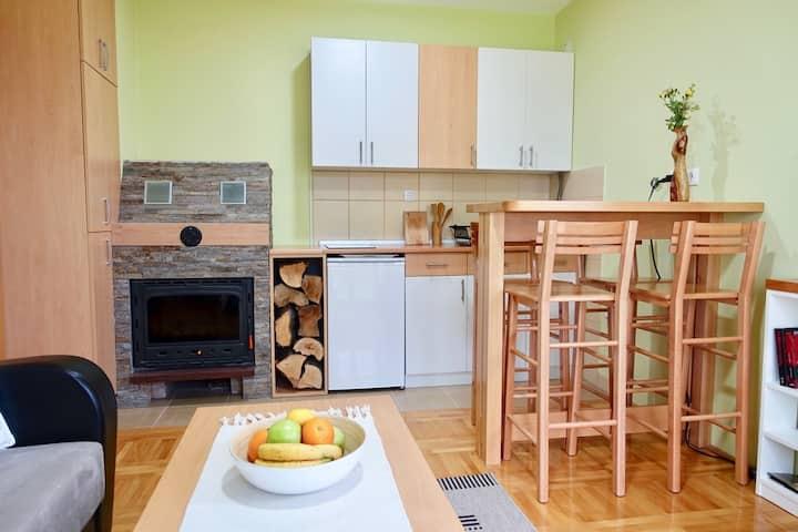 Modern & cosy apartment on mountain Tara 3