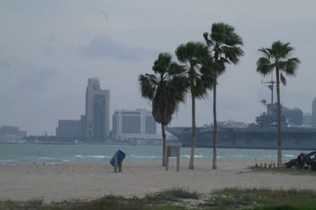 Corpus Christi Beach Condo 3140 - Corpus Christi