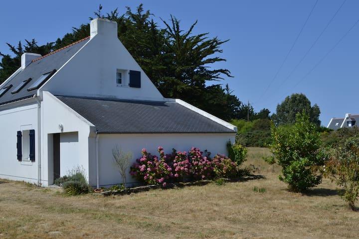 Renée Alberta - Bangor - Rumah