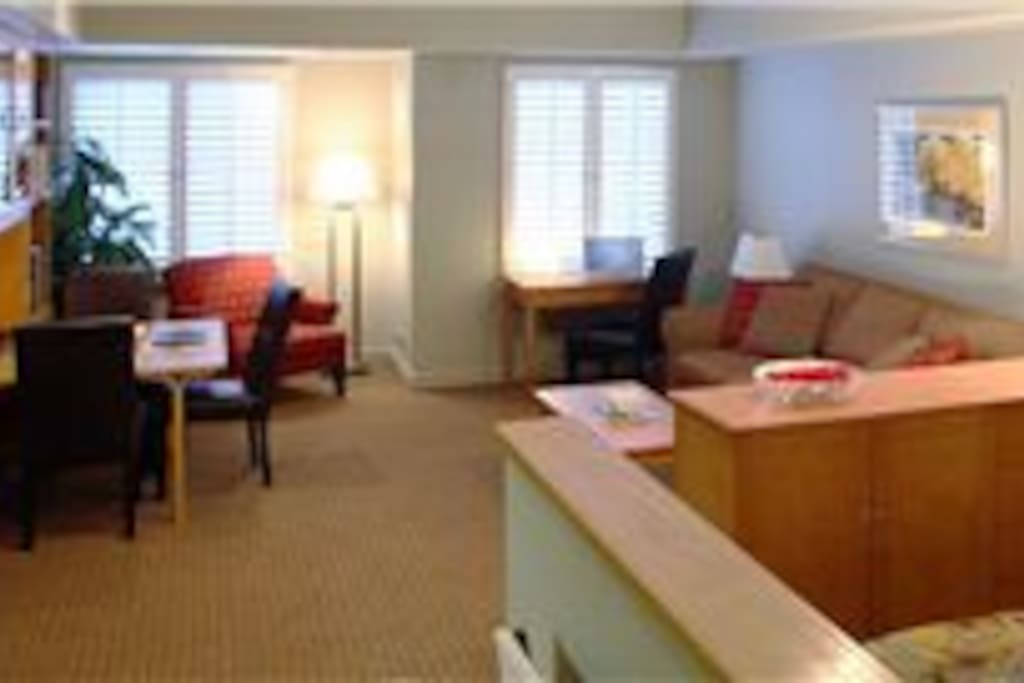 Deluxe Studio Condominium, sleeps 2-4 ppl.