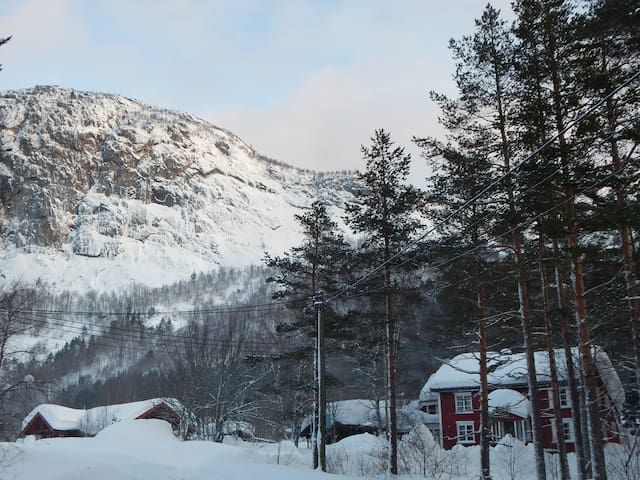 Trydal in Setesdal 25 min. from Hovden alpin/ski