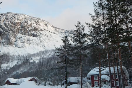 Trydal in Setesdal 25 min. from Hovden alpin/ski - Bykle
