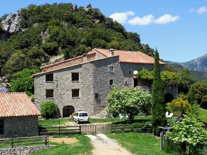 Can Coll de Pincaró
