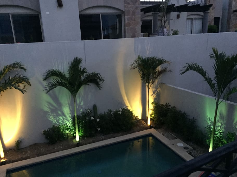 This is the pool at night with 13' palm trees, with accent lighting on each tree