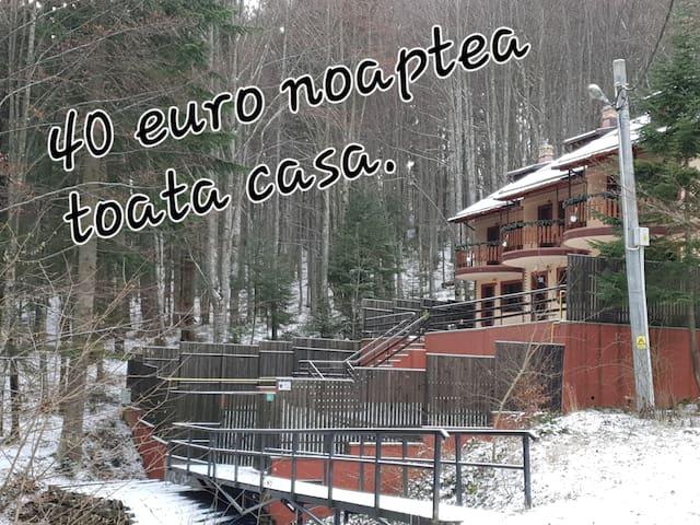 ELATI Sinaia Luxury Villas IOLI4
