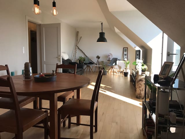 Nordic apartment, Copenhagen, 15min from centrum