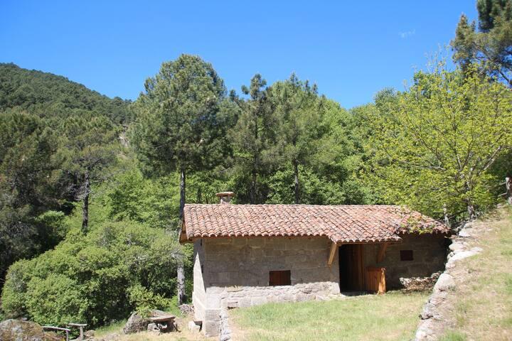 Cabaña Azahara, en el corazón de Gredos
