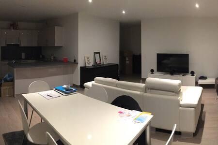Bel appartement à Carouge - Carouge - Wohnung