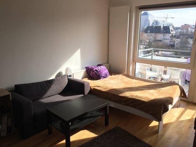 Zimmer mit Balkon in zentraler Lage - Frankfurt am Main - Apartment