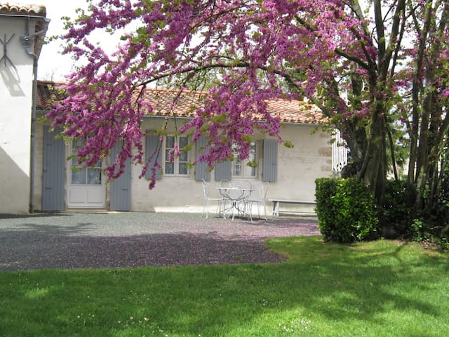 Chambre Cottage - Puyravault - Bed & Breakfast