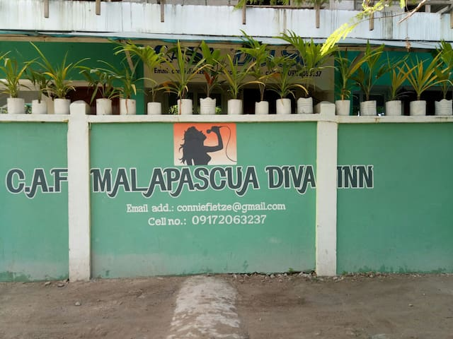 Malapascua Diva Inn  Fan Room