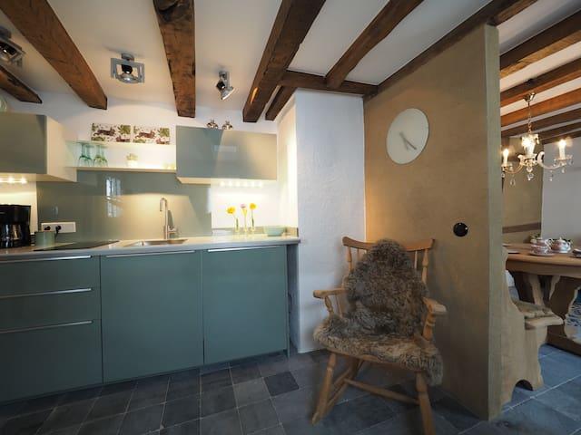 Küche mit angrenzendem Wohnbereich